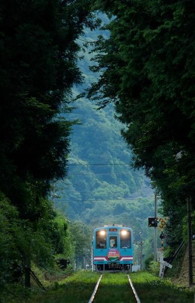 photocon_kiha.jpg
